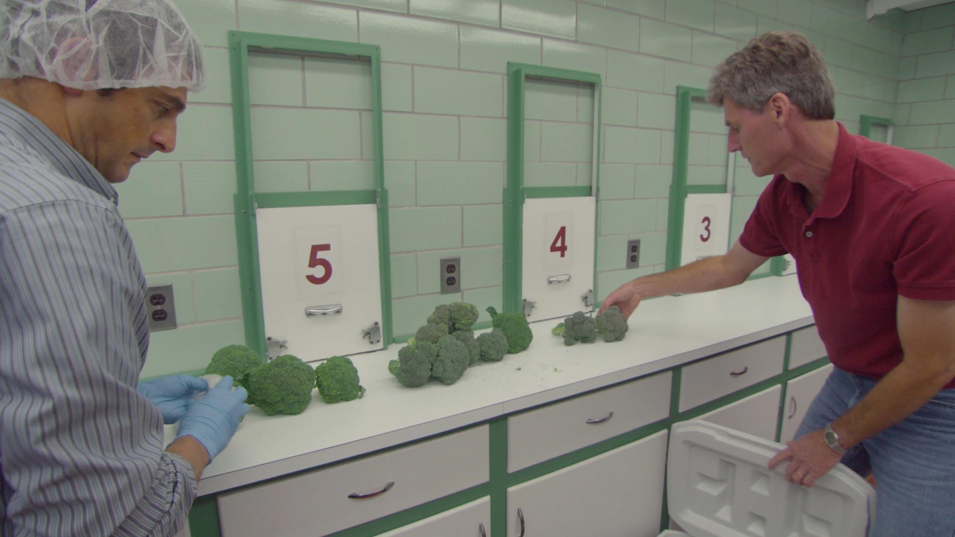 Web Extra: Broccoli Man