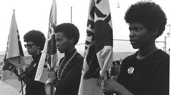 The Black Panthers - Trailer