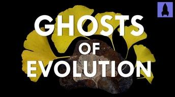 Ghosts of Evolution