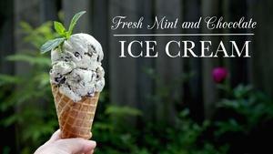 Fresh Mint and Chocolate Ice Cream