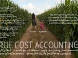 The Lexicon of Sustainability | True Cost Accounting: The Real Cost of Cheap Food