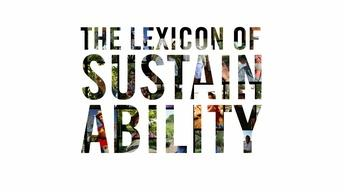 What Is The Lexicon of Sustainability?