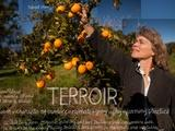 The Lexicon of Sustainability | Terroir