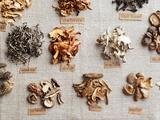 Martha Stewart's Cooking School | Mushrooms