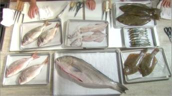 How to Prepare Fish