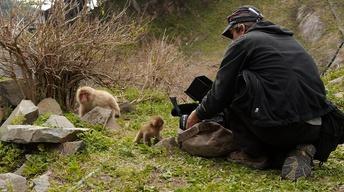 Behind The Scenes: Making of Snow Monkeys