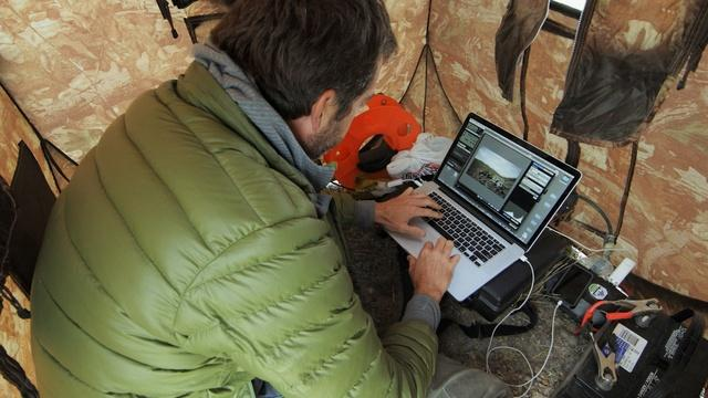 Behind the Scenes | Filming the Ferruginous Hawk