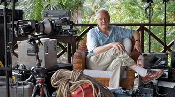 Attenborough's Life Stories: Life on Camera