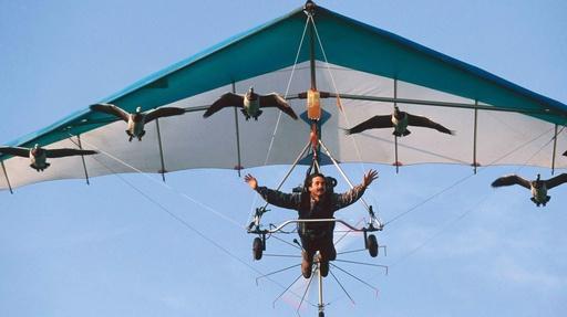 Flying High Video Thumbnail