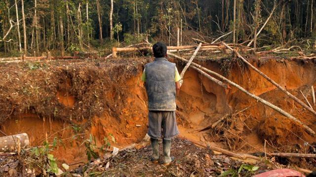 Illegal gold mining in the Amazon image