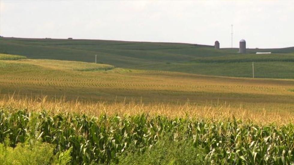Eye on Iowa image