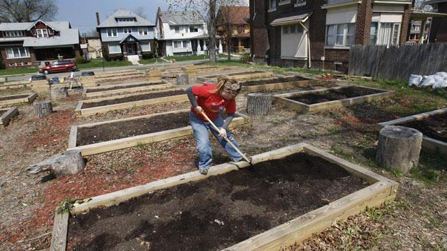 Urban farming in Detroit, consumer finance protection, gold  image