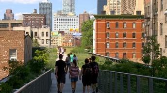 The thin green line: Investing in urban parks