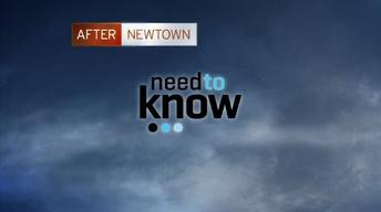 After Newtown -- 20 Second Promo