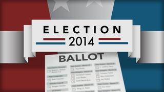 A look at November's big issue ballot initiatives