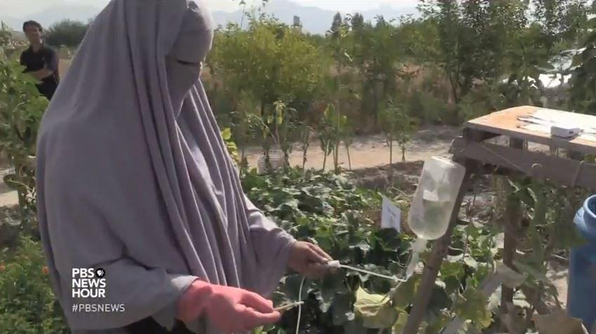 Helping Afghan women grow financial independence