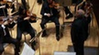 Orchestra Brings Together Israelis and Arabs For Common Goal