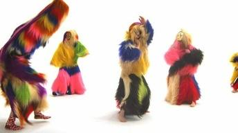 Nick Cave Brings Art, Sculpture to Life With 'Soundsuits'