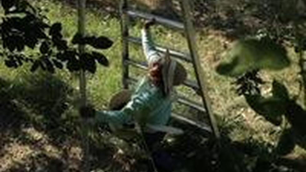 Crop Failure Leave Farm Workers Unemployed image