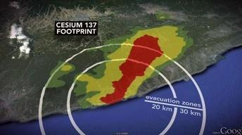 Near Fukushima, a Big 'Guessing Game' Over Long-Term Risks