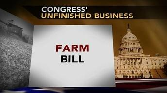 Food Stamps at Heart of 'Unfinished' Fight Over Farm Bill