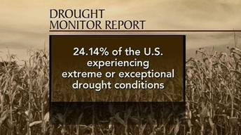 U.S. Plagued by Drought, Bleak Expectations for Crops