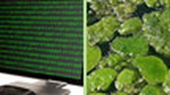 Public Genomes, Algae Fuel, Mystery of the Gakkel Ridge,...
