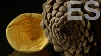 S44 Ep5: Nuestro Mundo de Origami