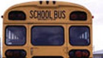 A Radical Fix for Schools?
