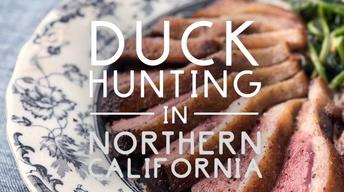 Duck Hunting in Northern California