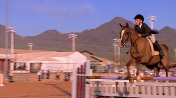 Horses of the West | Preview