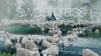 Sweetgrass - Trailer