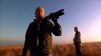 Big Birding Day image