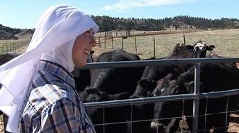 Healing Moral Wounds of War; Rancher Nuns; Baha'i Fast