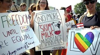 Landmark High Court Decisions, Reaction, and Analysis