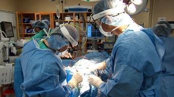 Bloodless Surgery