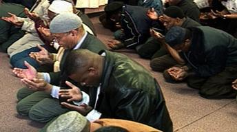 African-American Muslims' Views on Iraq War