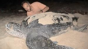 Trinidad's Turtle Giants