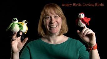 Danielle Whittaker: Angry Birds, Loving Birds