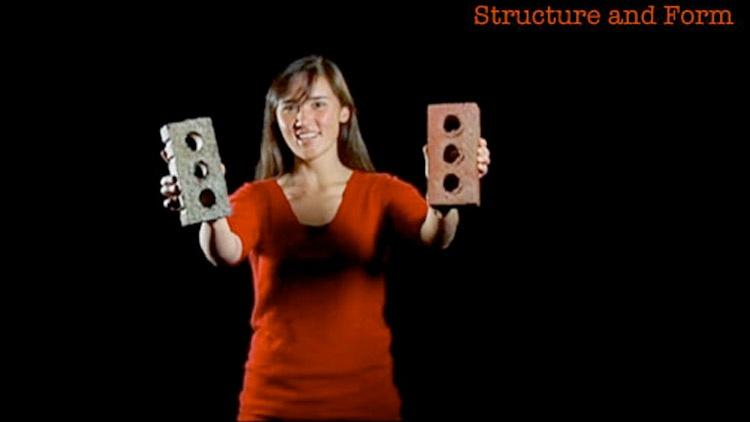 Emily Whiting: Structure and Form image