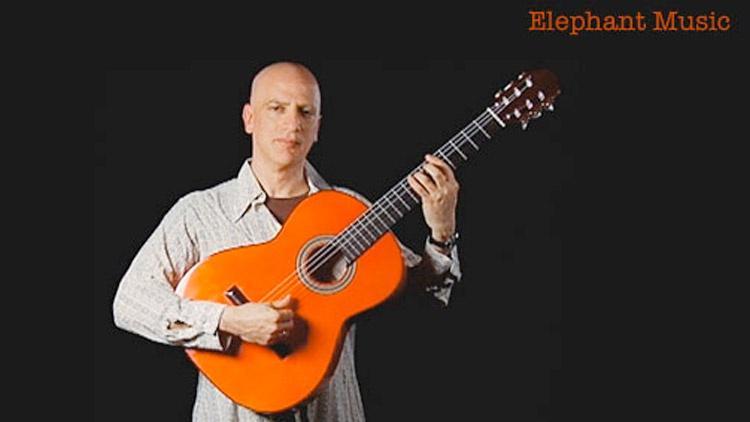 Dave Sulzer: Elephant Music image