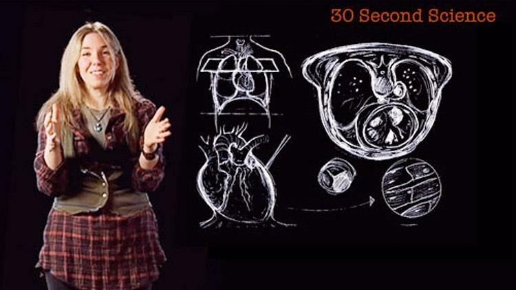 Caryn Babaian: 30 Second Science image