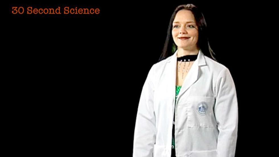 Rachel Collins: 30 Second Science image
