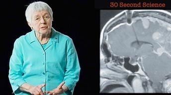 Jean Berko Gleason: 30 Second Science
