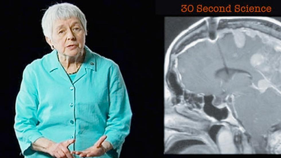 Jean Berko Gleason: 30 Second Science image