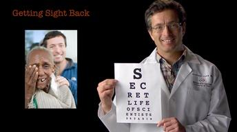 Geoff Tabin: Getting Sight Back image