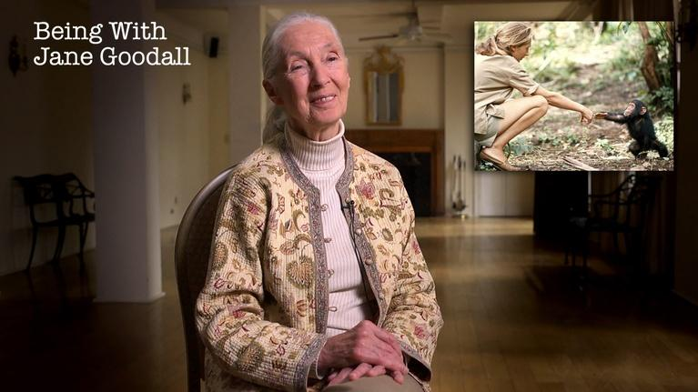 Being with Jane Goodall