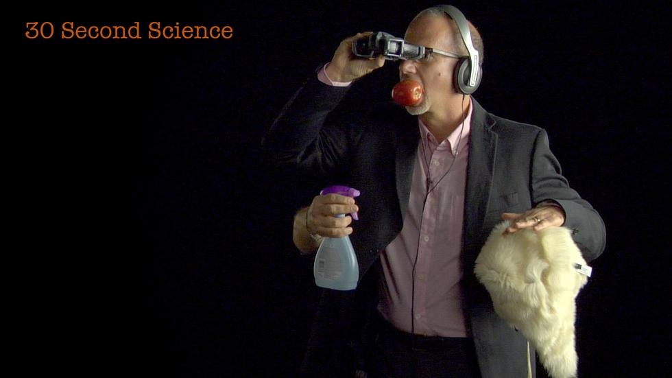 30 Second Science: Larry Rosenblum image