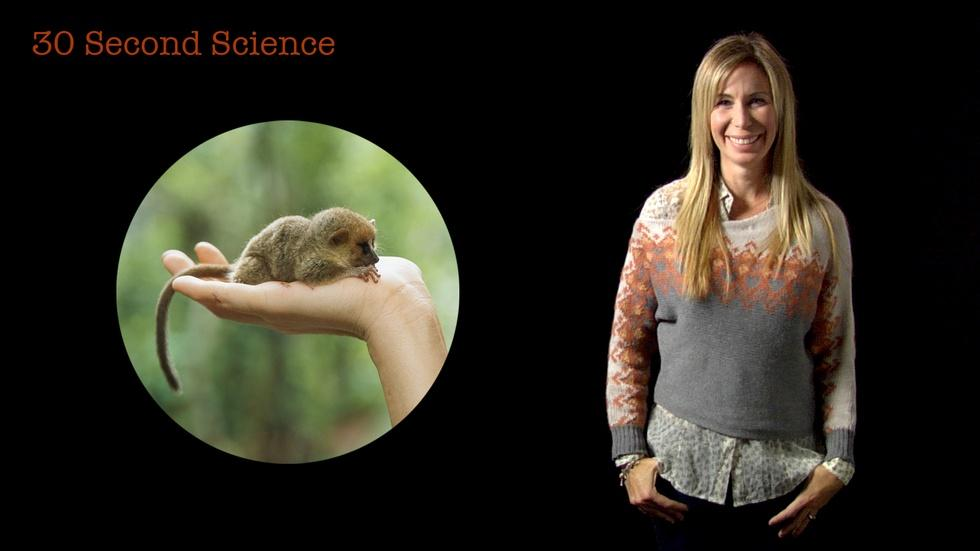 30 Second Science: Mireya Mayor image