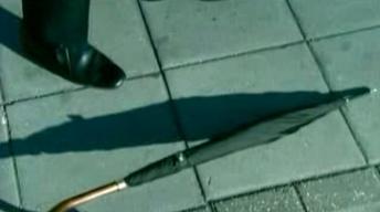 Umbrella Assassin